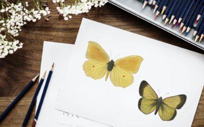 Exposants 2019 – Mosaïque, graphisme et papier